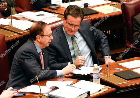Senate Deputy Minority Leader Joseph Griffo, R-Utica, left, speaks with Senate Minority Leader John Flanagan, R-Smithtown, during a Senate session at the state Capitol, in Albany, N.Y. New York state may soon allow immigrants who entered the U.S. illegally to get driver's licenses