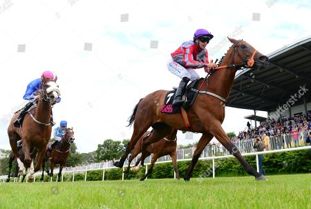 Horse Racing - 18 Jun 2019