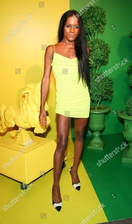 Editorial photo of World Pride summer kickoff party hosted by Alice and Olivia and The Trevor Project, New York, USA - 18 Jun 2019
