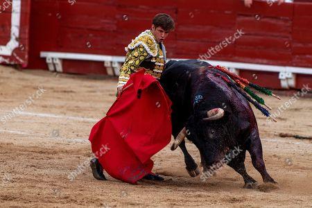 Spanish bullfighter Julian Lopez 'El Juli' fights a bull a bull during Corpus Christi bullfighting in Toledo, Spain, 20 June 2019.
