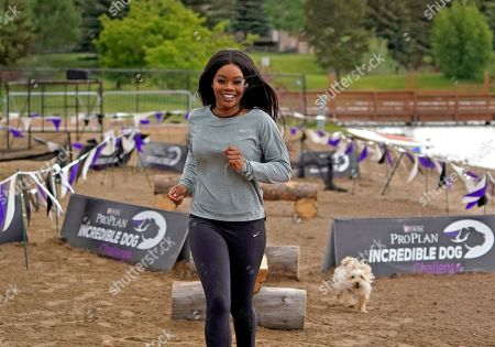 IMAGE DISTRIBUTED FOR PURINA PRO PLAN - Gold Medalist Gabby Douglas and her morkie, Chandler, run through the Mountain Dog Competition course at the 22nd Annual Purina Pro Plan Incredible Dog Challenge, which was held in Avon, Colo. on June 21 and 22, 2019