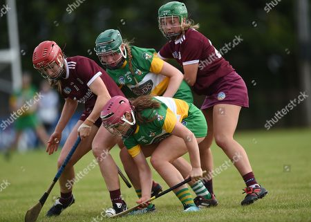 Offaly vs Galway. Offaly's Ciara Brennan and Grace Teehan with Teeny Cormican and Sarah Spellman of Galway