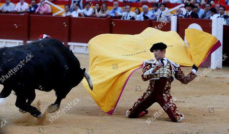 Spanish bullfighter Jose Maria Manzanares fights a bull during 'Feria de Hogueras' bullfighting fair in Alicante, eastern Spain, 22 June 2019.