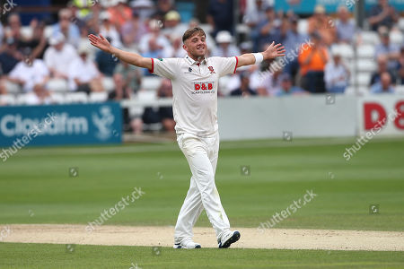 Aaron Beard of Essex celebrates taking the wicket of Steve Davies during Essex CCC vs Somerset CCC, Specsavers County Championship Division 1 Cricket at The Cloudfm County Ground on 24th June 2019