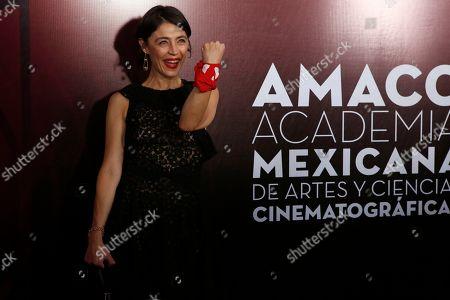 Editorial picture of Ariel Awards, Mexico City, Mexico - 24 Jun 2019