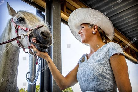 Stock Image of Queen Maxima of the Netherlands pets a horse as she attends the opening of riding school No Limits Noordwijk, in Noordwijkerhout, The Netherlands, 25 June 2019. The small-scale riding school provides therapeutic riding lessons for people with anxiety, autism, ADHD or Down's syndrome.