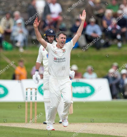 Graham Onions appeals for another wicket