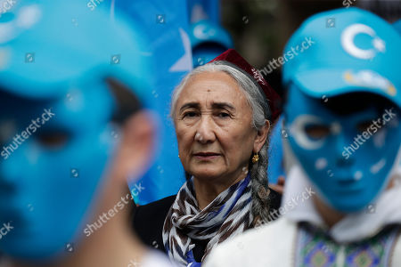 Stock Photo of Uyghur human rights activist Rebiya Kadeer protests against the Chinese government during a rally on the last day of the G-20 summit, in Osaka, Japan