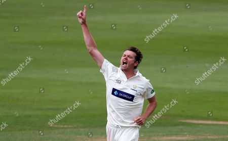 Michael Hogan of Glamorgan celebrates after Daryl Mitchell was caught by Tom Cullen.