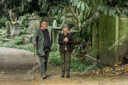 Brendan Gleeson as Donald Horner and Diane Keaton as Emily Walters