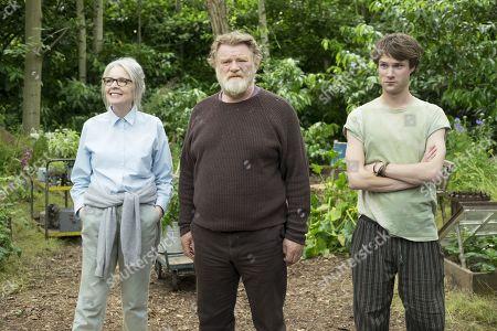 Diane Keaton as Emily Walters, Brendan Gleeson as Donald Horner and Hugh Skinner as Erik