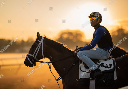 Horse Racing 03 Jul 2019 Stock Photos (Exclusive) | Shutterstock