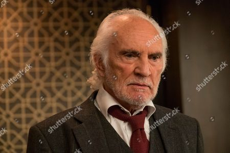 Terence Stamp as Malcolm Quince