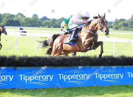 Stock Picture of TIPPERARY Thomas Hobson and Paul Townend win the Grade 3 Kevin McManus Bookmaker Grimes Hurdle. Healy Racing