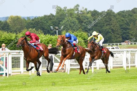 LASER SHOW (blue) ridden by Tom Queally beating Riot (maroon) in The Irish Stallion Farms EBF Novice Stakes at Sandown Copyright: Ian Headington/racingfotos.com