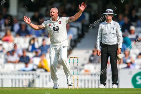 Darren Stevens of Kent appeals during the Specsavers County Champ Div 1 match between Surrey County Cricket Club and Kent County Cricket Club at the Kia Oval, Kennington
