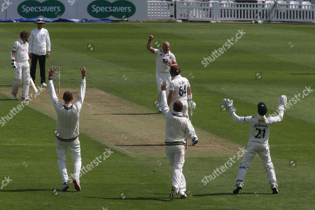 Kent appeal for a catch by wicketkeeper, Ollie Robinson, from the bowling of Darren Stevens but not out given during Surrey CCC vs Kent CCC, Specsavers County Championship Division 1 Cricket at the Kia Oval on 7th July 2019