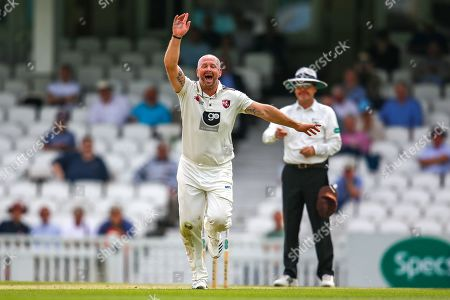 Wicket! Darren Stevens of Kent celebrates bowling out Rikki Clarke of Surrey caught Ollie Robinson of Kent during the Specsavers County Champ Div 1 match between Surrey County Cricket Club and Kent County Cricket Club at the Kia Oval, Kennington