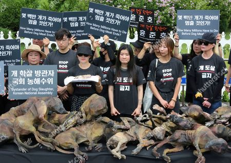 """American actress Kim Basinger, right, and members of the Last Chance for Animals with models of slaughtered dogs hold a rally to oppose eating dog meat in front of the National Assembly in Seoul, South Korea, . July 12 is the day South Koreans eat healthy foods such as dog meat in the belief it would help them survive heat during summer. The signs read: """"How many millions have to die before dog meat ends"""
