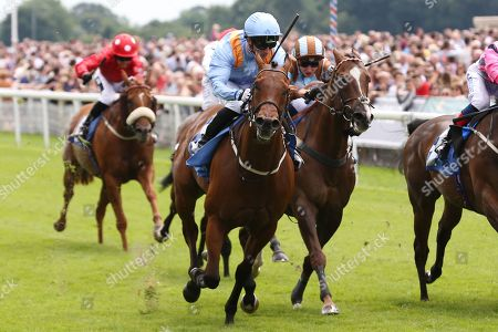 COPPER KNIGHT (1) ridden by David Allan and trained by Tim Easterby winning The Listed John Smiths City Of Walls Stakes over 5f (£50,000)  during the John Smiths Diamond Cup Meeting at York Racecourse, York