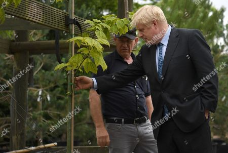 Stock Image of Conservative leadership contender Boris Johnson (R) is guided by business owner Paul King during a campaign event at King and Co. Tree Nursery, in Braintree, Britain 13 July 2019. Johnson is one of two Conservative Party candidates along with Jeremy Hunt who are vying to be Britain's next Prime Minister. The winner will be announced on 23 July.