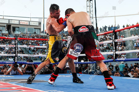 Ronny Rios of the US (L) in action against Diego de la Hoya of Mexico (R) during their NABF and WBA Gold Super Bantamweight Title fight at Dignity Health Sports Park in Carson, California, USA, 13 July 2019.