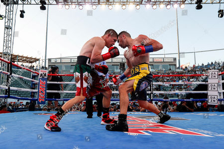 Ronny Rios of the US (R) in action against Diego de la Hoya of Mexico (L) during their NABF and WBA Gold Super Bantamweight Title fight at Dignity Health Sports Park in Carson, California, USA, 13 July 2019.