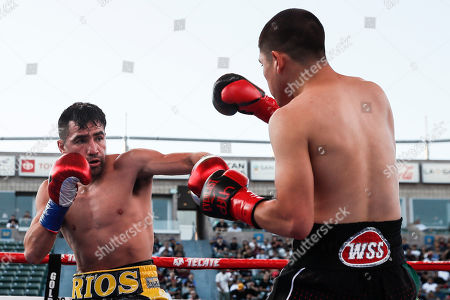 Stock Image of Ronny Rios of the US (L) in action against Diego de la Hoya of Mexico (R) during their NABF and WBA Gold Super Bantamweight Title fight at Dignity Health Sports Park in Carson, California, USA, 13 July 2019.