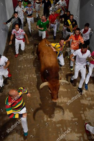 "Revellers run next to a fighting bull during the running of the bulls at the San Fermin Festival, in Pamplona, northern Spain, . The San Fermin fiesta made internationally famous by Ernest Hemingway in his novel ""The Sun Also Rises"" draws around 1 million partygoers each year"
