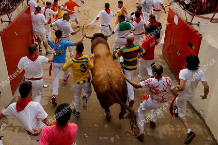 "Revellers and a fighting bull arrive at the bullring during the running of the bulls at the San Fermin Festival, in Pamplona, northern Spain, . The San Fermin fiesta made internationally famous by Ernest Hemingway in his novel ""The Sun Also Rises"" draws around 1 million partygoers each year"