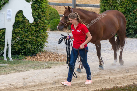 Gina Maria Schumacher, Reigning Tournament, Western Riding, CS Ranch