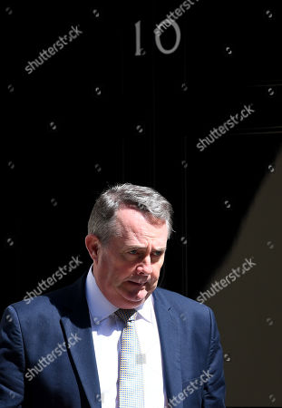 Liam Fox, Secretary of State for International Trade, leaves No.10 Downing Street after attending a cabinet meeting.