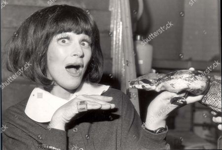 British Actress Fenella Fielding Pictured With A Snake At London Zoo; Fielding Was There With The Cast Of A Stage Production Of The Jungle Book.