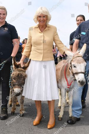 Royal visit to Devon and Cornwall, Day 3