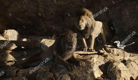Scar (Chiwetel Ejiofor), Mufasa (James Earl Jones) and Zazu (John Oliver)