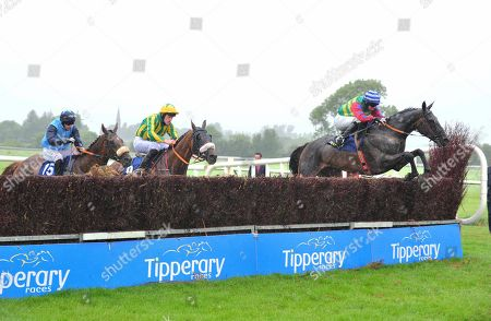 Stock Photo of TIPPERARY SHES FLAT TOTHEMAT and Darragh O'Keeffe jump the last to win The Jim Ryan Racecourse Services Handicap Steeplechase. Healy Racing
