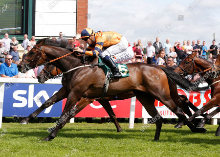 EVERYTHING FOR YOU and Kevin Stott Win the Ripon Bell-Ringer Handicap for trainer Kevin Ryan Ripon Racecourse