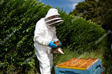 Beekeeper Richard Davies cares for some of his 250,000 Bees