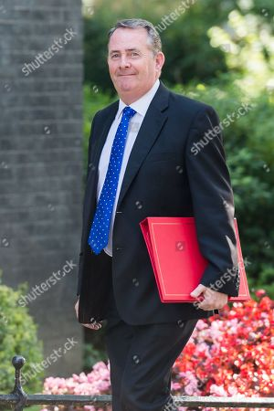 Secretary of State for International Trade and President of the Board of Trade Liam Fox arrives for Theresa May's final cabinet meeting as Prime Minister at 10 Downing Street in London.