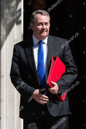 Secretary of State for International Trade and President of the Board of Trade Liam Fox leaves 10 Downing Street after Theresa May's final cabinet meeting as Prime Minister.