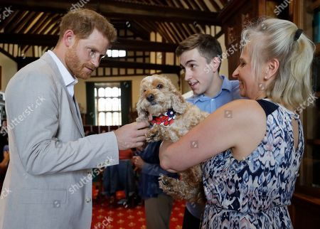 Britain's Prince Harry meets Bella the Cockapoo with Annegret Finlay and Karsten Finlay, as he attends Dr Jane Goodall's Roots & Shoots Global Leadership Meeting at St. George's House, Windsor Castle in England, . Roots & Shoots is a global programme empowering young people of all ages, working to ignite and inspire the belief that every individual can take action to make the world a better place for people, animals and the environment