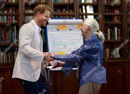 Britain's Prince Harry and Dr Jane Goodall dance as he attends Dr Jane Goodall's Roots & Shoots Global Leadership Meeting at St. George's House, Windsor Castle in England, . Roots & Shoots is a global programme empowering young people of all ages, working to ignite and inspire the belief that every individual can take action to make the world a better place for people, animals and the environment