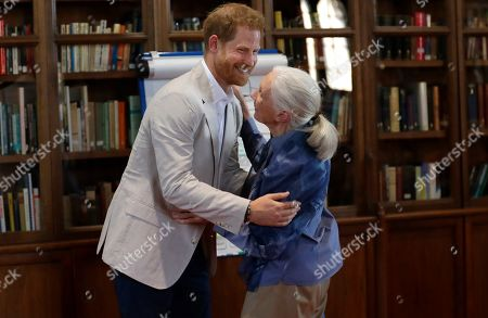 Britain's Prince Harry and Jane Goodall hug as he attends Dr Jane Goodall's Roots & Shoots Global Leadership Meeting at St. George's House, Windsor Castle in England,. Roots & Shoots is a global programme empowering young people of all ages, working to ignite and inspire the belief that every individual can take action to make the world a better place for people, animals and the environment