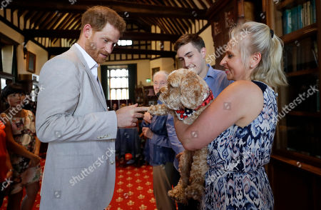 Britain's Prince Harry meets Bella the Cockapoo with Annegret Finlay and Karsten Finlay, as he attends Dr Jane Goodall's Roots & Shoots Global Leadership Meeting at St. George's House, Windsor Castle in England,. Roots & Shoots is a global programme empowering young people of all ages, working to ignite and inspire the belief that every individual can take action to make the world a better place for people, animals and the environment