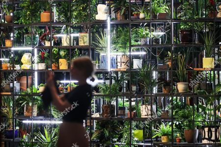 A visitor is silhouetted in front of the installation 'Antoine's Organ' by US artist Rashid Johnson as part of the exhibition 'Garden of Earthly Delights' in the Martin Gropius Bau in Berlin, Germany, 25 July 2019. Over 20 international artists used the space of the garden as a metaphor for the state of the world. The exhibition runs from 26 July to 01 December 2019.