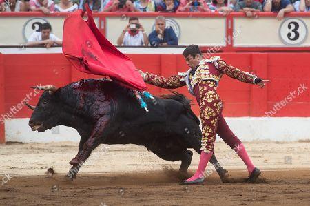 Spanish bullfighter Jose Maria Manzanares fights a bull during Santiago's Fair bullfighting at Santander's bullring in Santander, northern Spain, 26 July 2019.