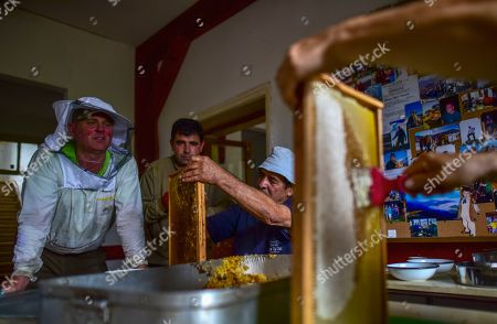 Beekeeper Goce Cakarov (L) watches helpers removing wax from frames full of honey to open them in preparation for the centrifuge where the honey is separated from the frame  during this year's first honey extraction from beehives situated next to the mountaineer?s home Karadzica (altitude of 1450m) on the mountain Jakupica, 45km south of Skopje, Republic of North Macedonia, 25 July 2019. Goce Cakarov manages the mountaineer home Karadzice and also keeps more than 50 beehives. Because of the high altitude, distance from any industrial or residential area (more than 40km) the honey that the bees produce belong to the category of high quality organic honey, even though it doesn?t have the certificate for organic products. According to him, a Macedonian family that has 100 beehives can produce around 1500kg of honey yearly. The high quality mountain-meadow honey is being sold for a minimal price of 8.5 euro per 0.7 litter jar, which means that the annual earnings are higher than 12,000 euro, or 20 percent higher than the average annual income of a Macedonian household. Beekeeping in North Macedonia is a rising business and is becoming an important part of modern lifestyle. A large number of young people are deciding to get into beekeeping, as stated by the president of the North Macedonian 'Beekeeping Federation' Jane Markov. According to the Ministry of Agriculture, in North Macedonia there are more than 7,000 families that work with beekeeping. The estimate of the Ministry is that in the country there were more than 240,000 beehives at the end of 2018. Depending on the weather conditions, one beehive produces from 18 up to 35 kg of honey. According to their data in 1992, North Macedonia produced more than 1,600 tons of honey. Due to the climate changes, weather conditions and the high increase in the use of pesticides, the honey production has sharply decreased. The estimate is that in 2018 the honey productin was around 400 tons.