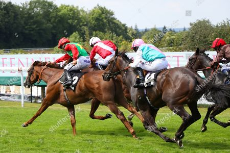 BILLESDON BROOK (near) ridden by Sean Levey gets the better of Perfection & Jubiloso (14) in The Theo Fennell Oak Tree Stakes (Group 3) at Glorious Goodwood Copyright: Ian Headington/racingfotos.com