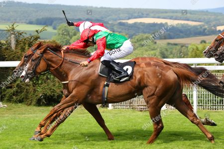 BILLESDON BROOK (near) ridden by Sean Levey gets the better of Perfection in The Theo Fennell Oak Tree Stakes (Group 3) at Glorious Goodwood Copyright: Ian Headington/racingfotos.com
