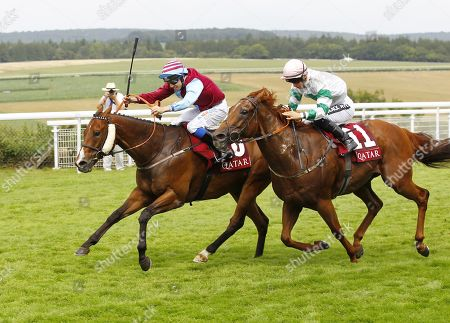 Editorial image of Horse Racing - 03 Aug 2019